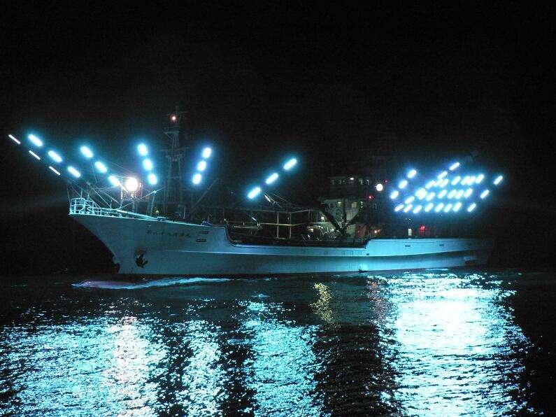 LED案例分享—集鱼灯应用